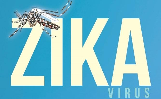 Zika: il virus che danneggia i neonati
