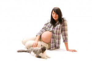 toxoplasmosi in gravidanza 600x400 300x200 - Toxoplasmosi cosa evitare in gravidanza: consigli ed approfondimenti