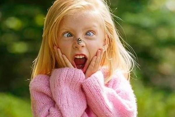 Punture d'insetto ed allergia nei bambini