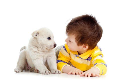 Bambini e stress: un aiuto dagli animali domestici