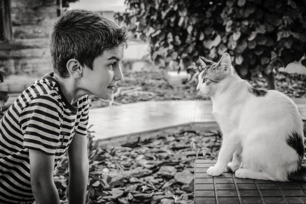 boy 2886169 1920 1024x683 - Pet therapy e animali domestici: i benefici