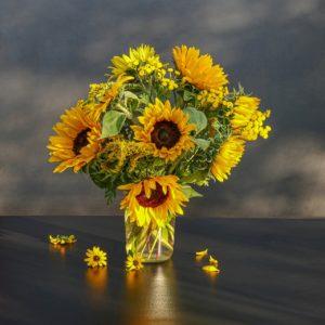 significato girasole 300x300 - Girasole: significato nel linguaggio dei fiori