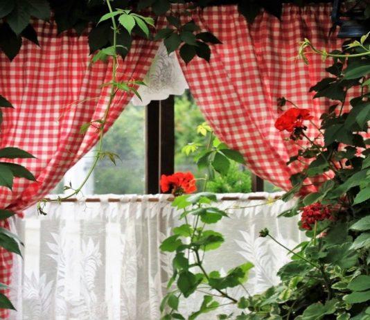 casa green min 534x462 - Home